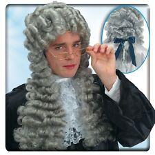 Perruque Louis XIV grise Juge 18 ème siècle theatre show deguisement costume