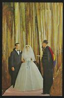 Lake of the Ozarks Arkansas Bridal Cave Tracy's Resort Lot Two Vintage Postcards