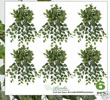 """SIX 30"""" Cissus Artificial Hanging Silk Plant Ivy BCI180"""