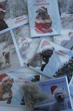 Cartes de noël avec des photos de plusieurs races, carlin, épagneul, collie, greyhound etc