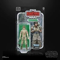 LUKE SKYWALKER Empire Strikes Back 40th Anniversary DAGOBAH Black Series In Hand