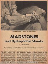 Madstones & Hydrophobia & Skunks by J. Frank Dobie