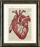 Antique Book page Art Print A4 - Anatomical Heart Vintage Dictionary Wall Art