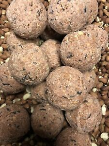 18 Nature's Feast Fruit & Berry High Energy Wild Bird Fat Ball Approximately 2KG