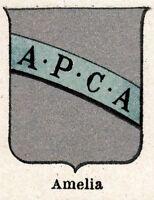 Amelia: Piccolo Stemma del 1901.Terni.Umbria.Cromolitografia + Passepartout.1901
