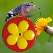 Flowers Shape Handhold Bird Hummingbird Feeder Drinker Plastic Water and Seed