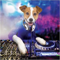 FIZZY POP 3D HOLOGRAPHIC BIRTHDAY CARD FUNNY DJ DOG WITH DECKS 1STP&P