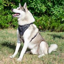 Siberian Husky Dog Chest Harness Medium Large Padded Real Leather Black Brown