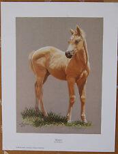 Ann Hanson Blondie Limited Edition Fine Art Print Western Animals Horse Foal AP