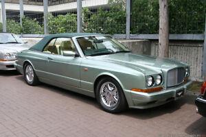 Bentley AZURE Grille Vanes UB87042  UB87043 No Longer Available  1996 - 1997 New
