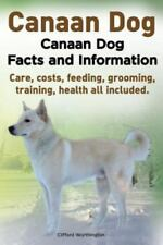Canaan Dog. Canaan Dog Facts and Information. Canaan Dog Care, Costs, Feeding.