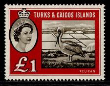 More details for turks & caicos islands qeii sg253, £1 sepia & deep red, m mint. cat £48.
