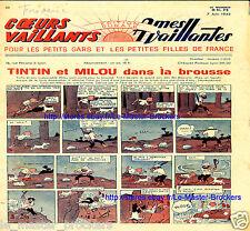 Tintin et Milou brousse_*Congo_Coeurs Ames Vaillants 7 Juin 1942_BD Sylvette