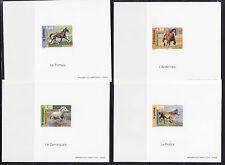 FG ND   série nature  les chevaux    1998   num: 3182 a 3185
