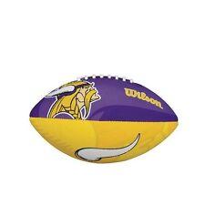 Minnesota vikings fan Ball