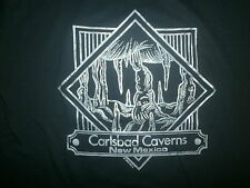 CARLSBAD CAVERNS T SHIRT vtg 80s 90s Do It In Cave New Mexico National Park XL