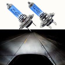 2x 12V H7 100W 6000K Xenon White Low Beam Super Bright Halogen Headlight Bulbs