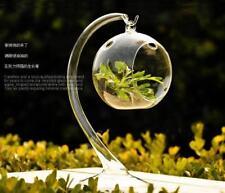 Clear Glass Hanging Ball Flower Vase Hydroponic Terrarium Candlestick Decor