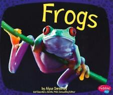 Frogs by Alyse Sweeney