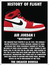c582609d53e7aa TY02651 Michael Jordan Nike Air Jordan Brand Hot Canvas Big 14