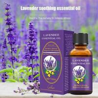 Product Lavender Pure Essential Oil Body Skin Care Essential Oil Massage A5K1