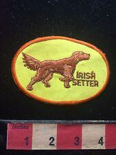 Vtg Souvenir IRISH SETTER DOG Patch ~ Animal Pet Lover Collectible 73X7