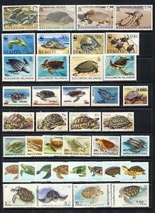 Turtles and tortoises mnh vf worldwide sets blocks and sheets on 2 stockpages