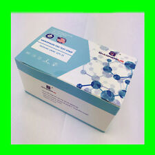 DiagnosUS One Step Menopause FSH Test Strip 25Count