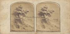 Photographie primitive d'une sculpture Stereo Vintage albumine ca 1855