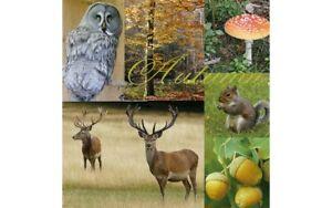 20 Paper party Napkins Autumn Mood 20 3 Ply Luxury Animals Serviettes