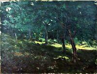 FOREST. OIL ON CANVAS. SIGNED MN (MOSSEN JOSEP?) GELABERT. SPAIN. END XIX