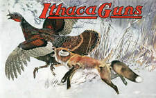 Ithaca Guns AD, Fox Wild Turkey by Lynn Bogue Hunt