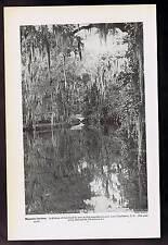 MAGNOLIA GARDENS - Charleston South Carolina 1937 Lithograph