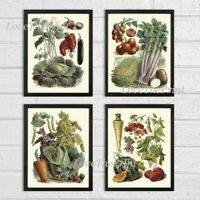 Unframed Botanical Wall Art Print Set 4 Antique Kitchen Garden Vegetables Plants