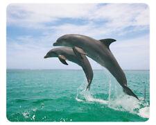 Tapis De Souris la Edition colibri : sautant Dauphin - Jumping Dolphins - Neuf