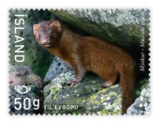 Iceland 2020 North Stamp 2020 – Mammals-Mink 1 Stamp