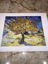 "VAN GOGH VINCENT - THE MULBERRY TREE, 1889 - ART PRINT POSTER 11"" X 14"" (308)"
