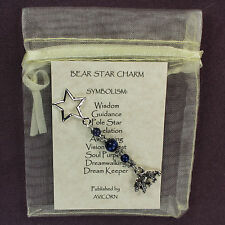 BEAR STAR CHARM Totem Amulet Symbol Pole North Sign Constellation Dreams Astral