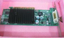 Sun 370-6800 X9211A nVIDIA Quadro NVS280 Graphics Accelerator Card