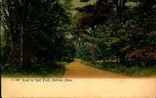 MELROSE MASSACHUSETTS MA Spot Pond Rd 1907 Vintage Color Postcard