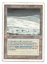 1x Tundra (Revised) Rare Land Dual