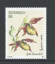 Oostenrijk - Orchidee / Gelber Frauenshuh - 2017