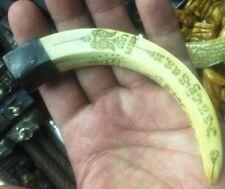 LP Sawai Holy Talisman Power Real Pig Tooth Charm Hog Amulet Thai Pendant