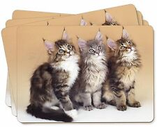 Cute Maine Coon Kittens Picture Placemats in Gift Box, AC-28P