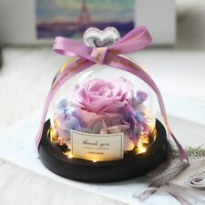 Rose Eternal Dome Glass Gift Light Flower Beast Dipped Gold Preserved Led Beauty