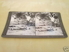 WW1 STEREOVIEW - CUTTING THE WIRE  WHERE OUR GALLANT HEROS FELL
