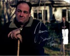 James Gandolfini Autographed Signed 8x10 Photo ( The Sopranos ) REPRINT