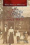 Two Little Indians and the Sister Made Three by Mary Frances Williams (2010,...