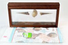 Vintage Transart Coastal Seashell Shadowbox Wall Decor & Seashell Tablecloth