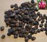 PLATANO ROSA - original y comestible -  musa velutina 11 semillas